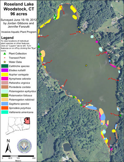 Map of aquatic species identified at Roseland Lake in 2012